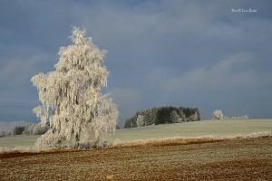 Zima na Hůrce